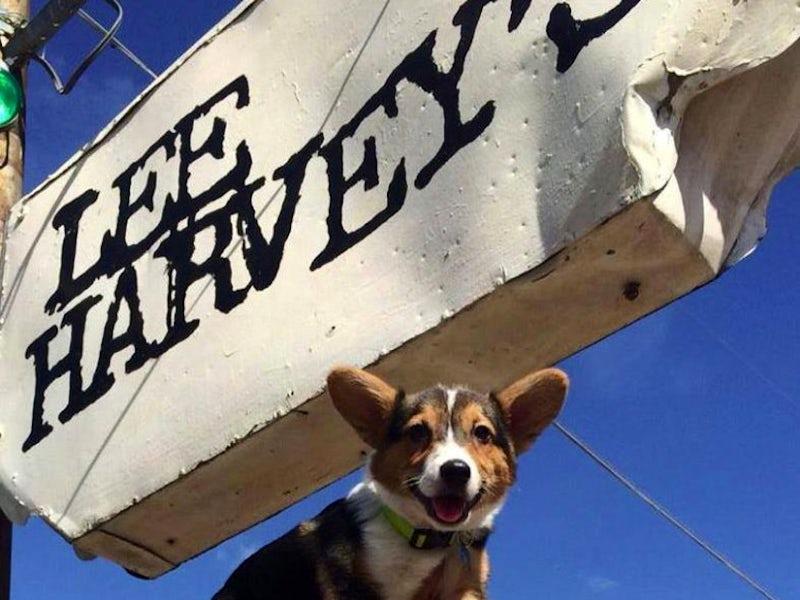 Lee Harvey's in Cedars Southside