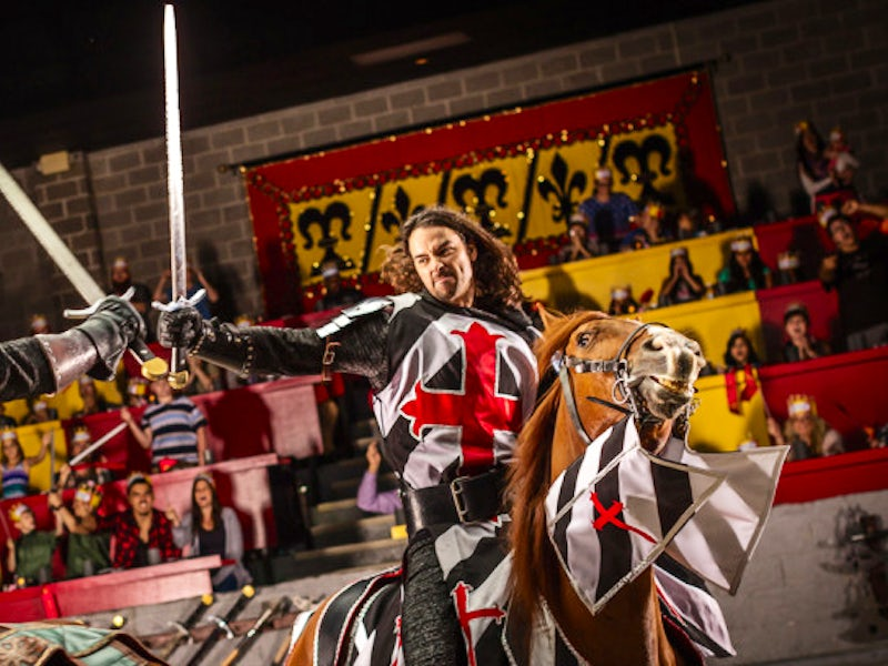 Medieval Times Dinner & Tournament in Love Field + Surrounding Areas