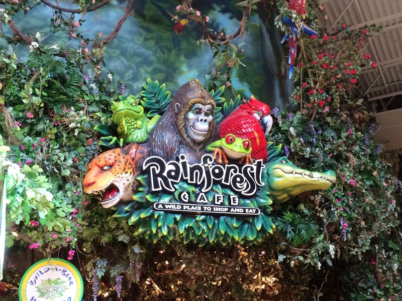 Coupons For Rainforest Cafe Grapevine Tx