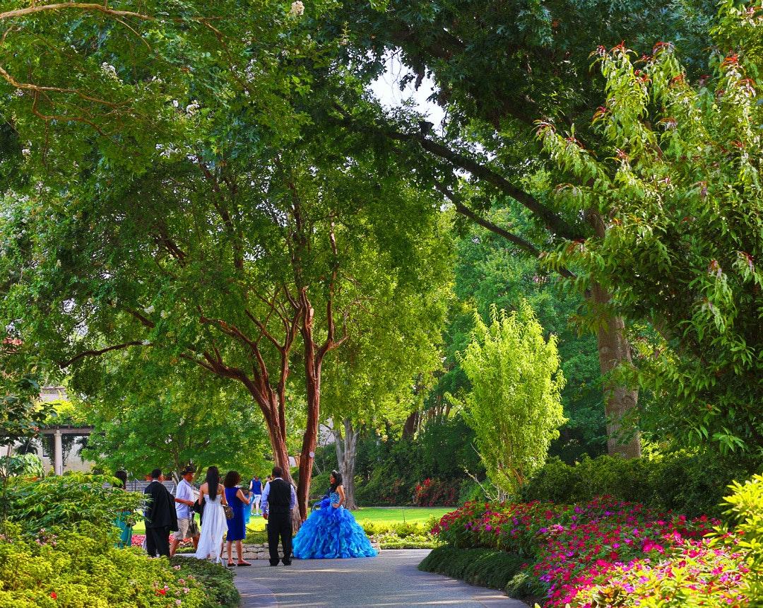 dallas arboretum and botanical garden  dallas  tx 75218  visit dallas