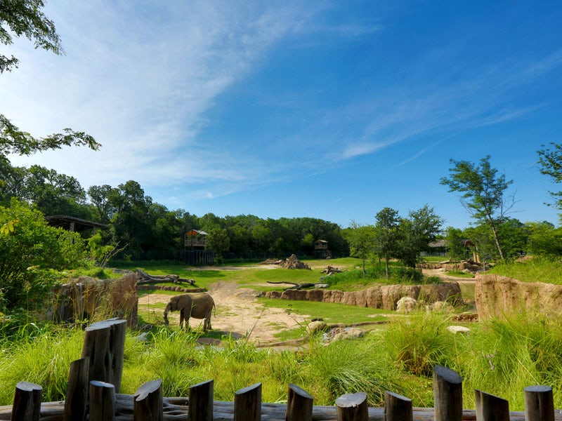 Dallas Zoo in South Dallas