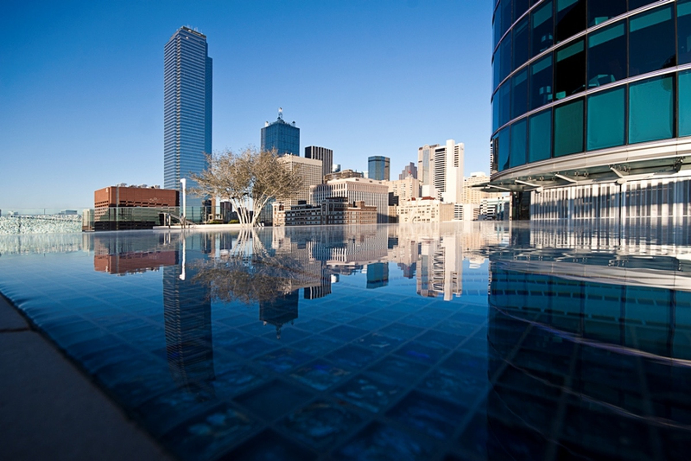 Omni Dallas Hotel in Beyond Dallas