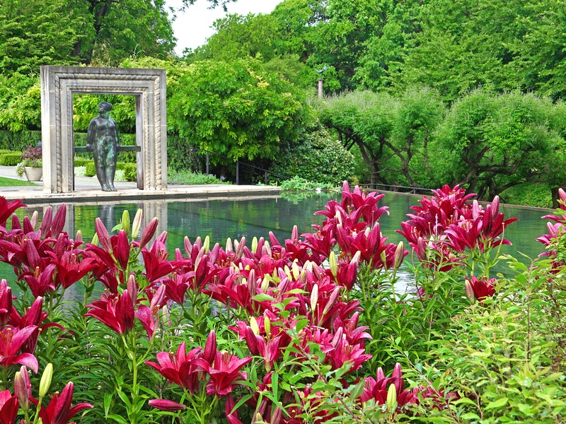 Dallas Arboretum and Botanical Garden in Beyond Dallas