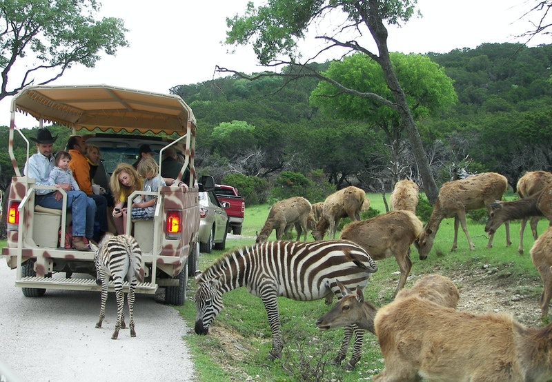 Fossil rim coupons 2019