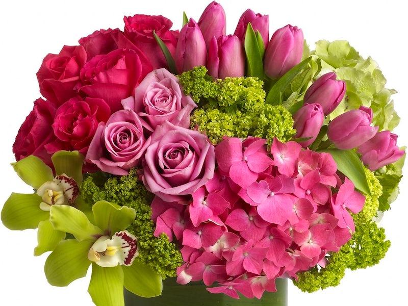 McShan Florist in Northeast Dallas (Proper)