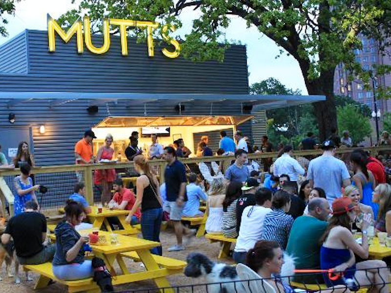 Mutts Canine Cantina in Uptown (Proper)