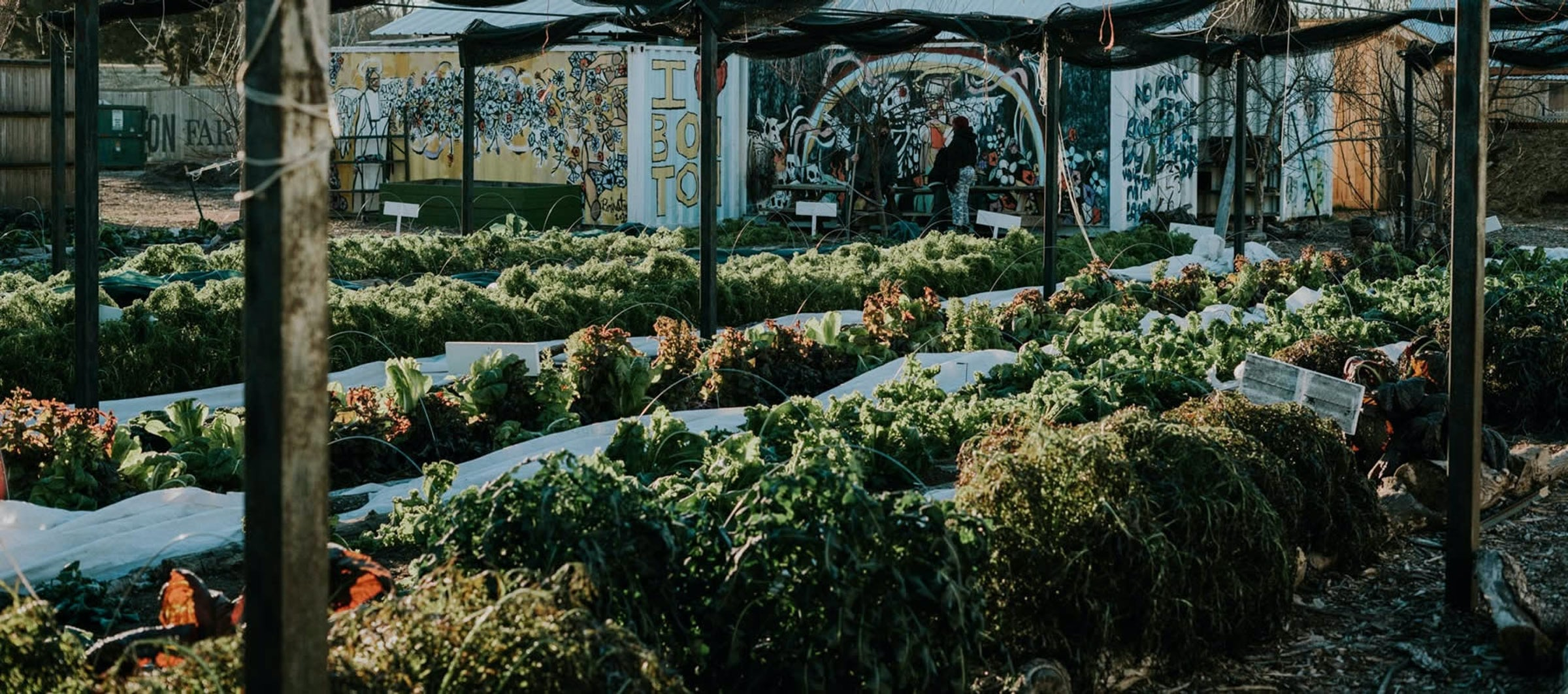 The Market at Bonton Farms in Beyond Dallas