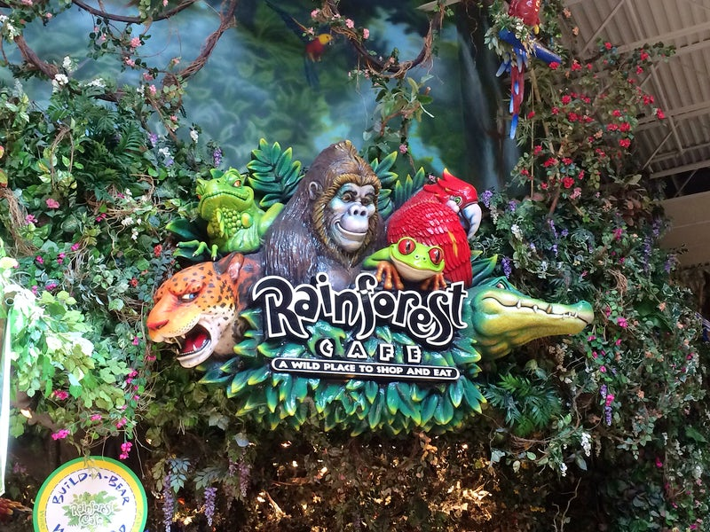 Rainforest Cafe in Beyond Dallas